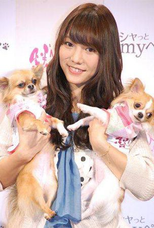 Участница группы AKB48 создала свой модный бренд для животных