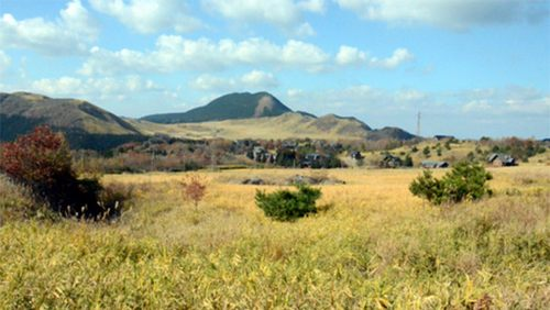 Жители города Юфу выступили против строительства солнечной электростанции